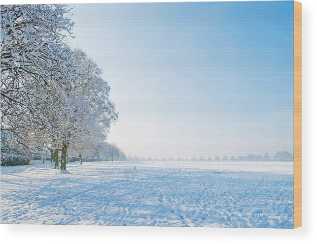 Clearing Wood Print featuring the photograph Winter Scene by FL collection