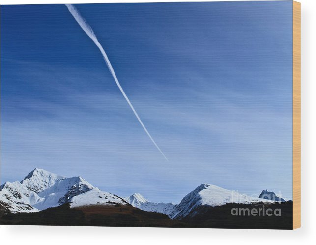 Nature Wood Print featuring the photograph Snowbird Express by Terry Cotton