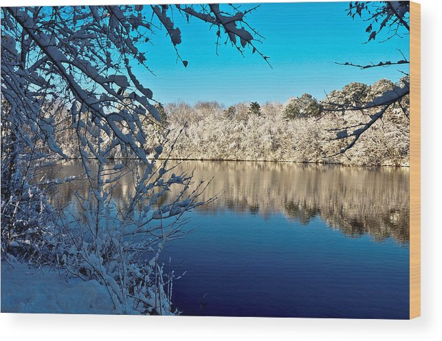 Landscape Wood Print featuring the photograph Snowy Morning by Cami Amick