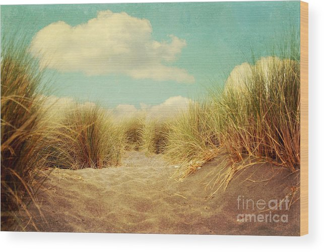 Landscape Wood Print featuring the photograph Solitude by Sylvia Cook