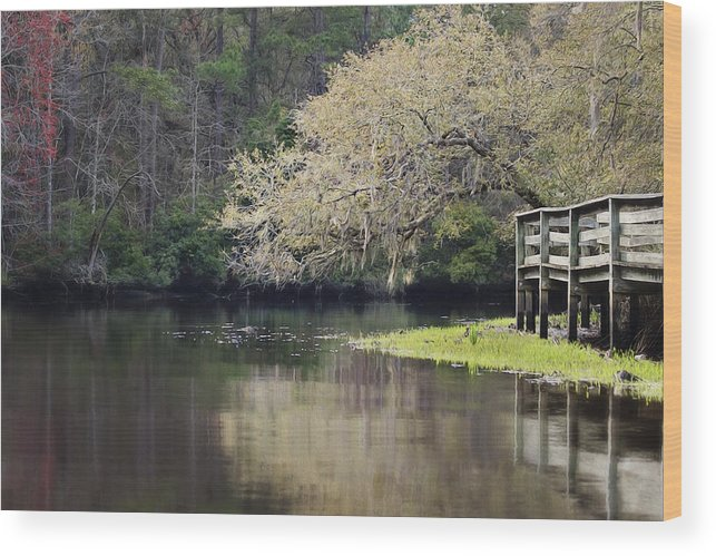 Ashley River South Carolina Wood Print featuring the painting Spring On The Ashely River by Brandy Sims