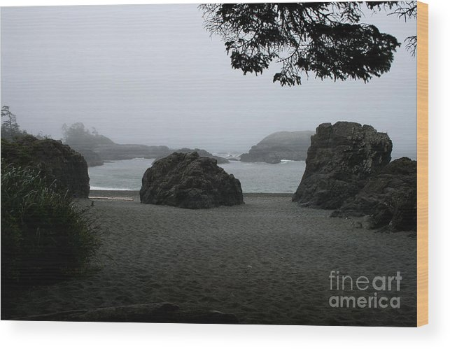 Vancouver Island Wood Print featuring the photograph Standing Strong Against The Tide by Cheryl Hurtak