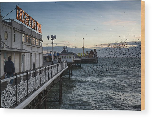Landscape Wood Print featuring the photograph Starling Murmuration Over Brighton Pier In England by Matthew Gibson