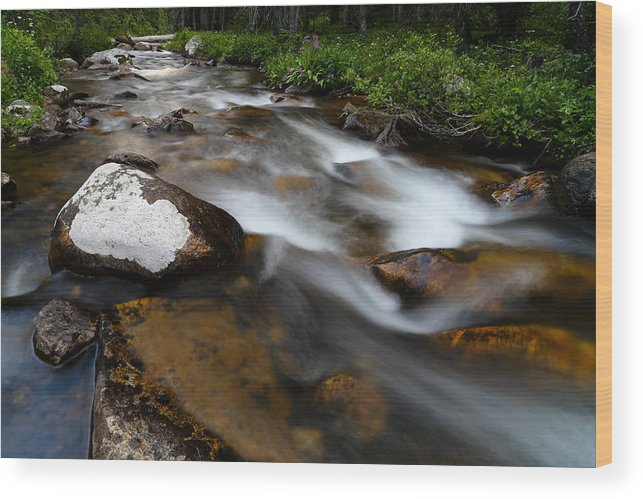 Stream Wood Print featuring the photograph Stream Run 3 by Kevin Buffington