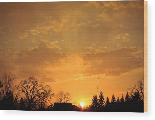 Sunset Wood Print featuring the photograph Sundown by Bette Bresette