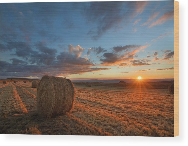Sunset Wood Print featuring the photograph Sunset Hay by Des Jacobs