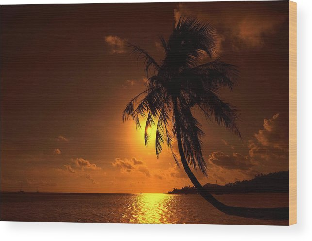 Palm Wood Print featuring the photograph Sunset In The South Pacific by Jim Southwell