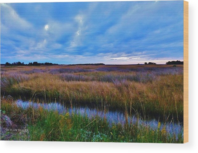 Ocean Wood Print featuring the photograph Sunset On The Marsh by Holly Dwyer