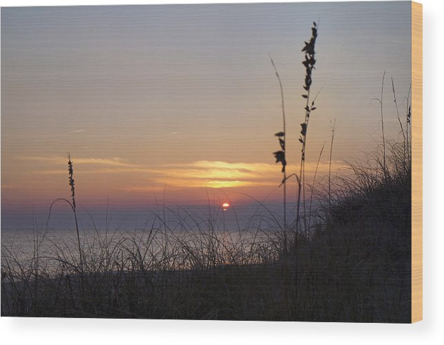Sunset Wood Print featuring the photograph Sunset Paradise by Betsy Knapp
