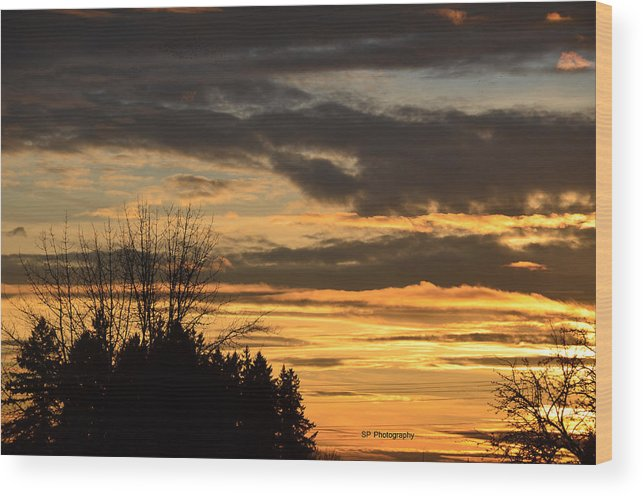 Sunset Landscape Tree Winter Fall Clouds Sky Trees Sun Evening Golden Sky Wood Print featuring the photograph Sunsetsp by S P