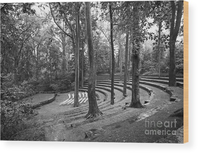 Pennsylvania Wood Print featuring the photograph Swarthmore College Scott Amphitheater by University Icons