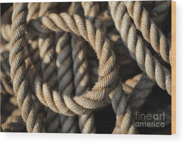 Rope Wood Print featuring the photograph Tangled Rope Closeup by Konstantin Sutyagin
