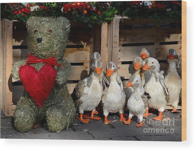 Teddy Wood Print featuring the photograph Teddy Bear With Flock Of Stuffed Ducks by Imran Ahmed