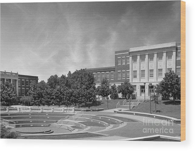 Averitte Amphitheater Wood Print featuring the photograph Tennessee State University Averitte Amphitheater by University Icons