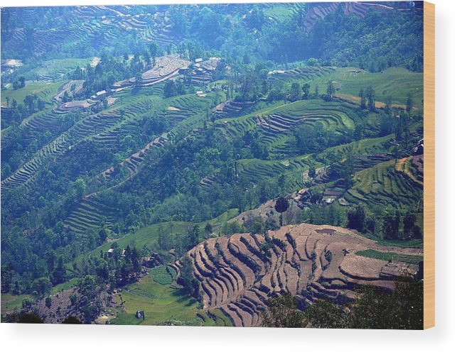 Nagarkot Wood Print featuring the photograph Terraced Slopes by Gerard Goh