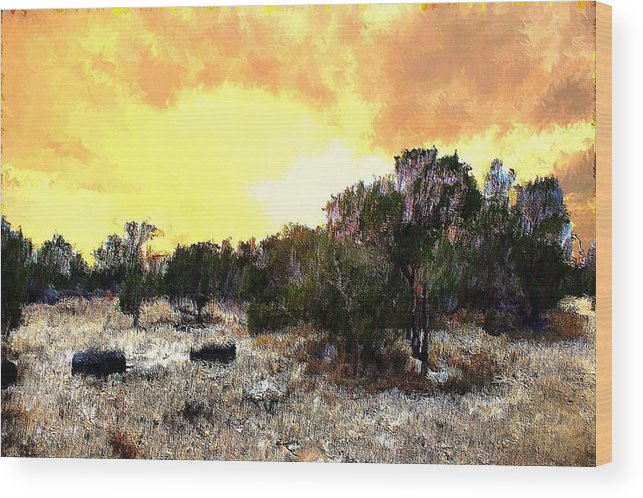 Landscape Wood Print featuring the mixed media Texas Hill Country by Terence Morrissey