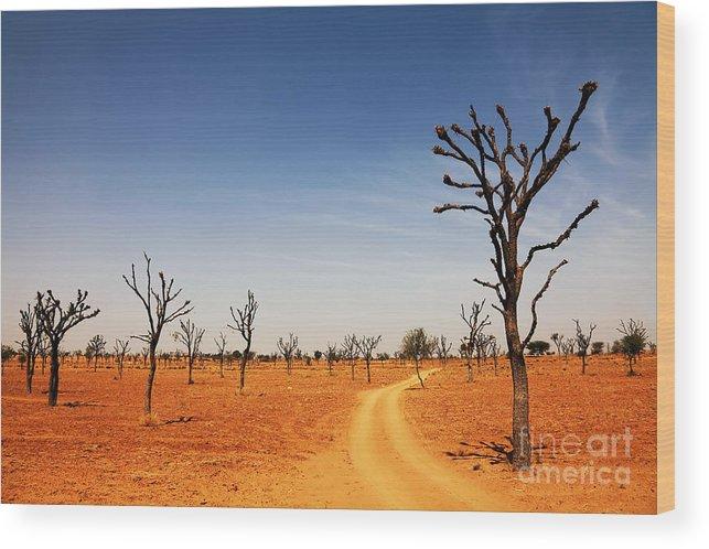 India Wood Print featuring the photograph Thar Desert by Sorin Rechitan