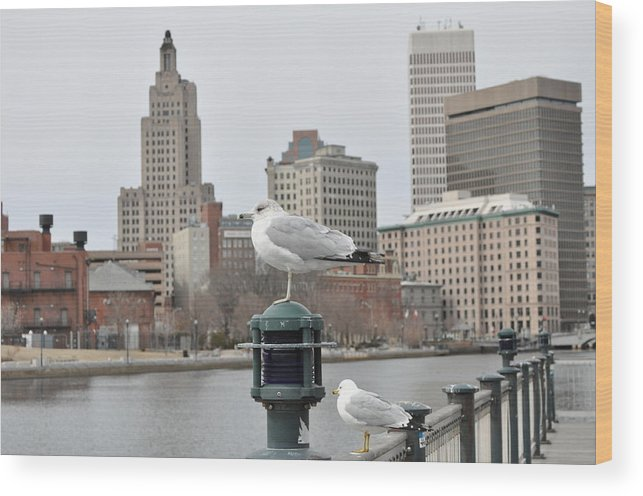 Landscape Wood Print featuring the photograph The City by Kari McDonald