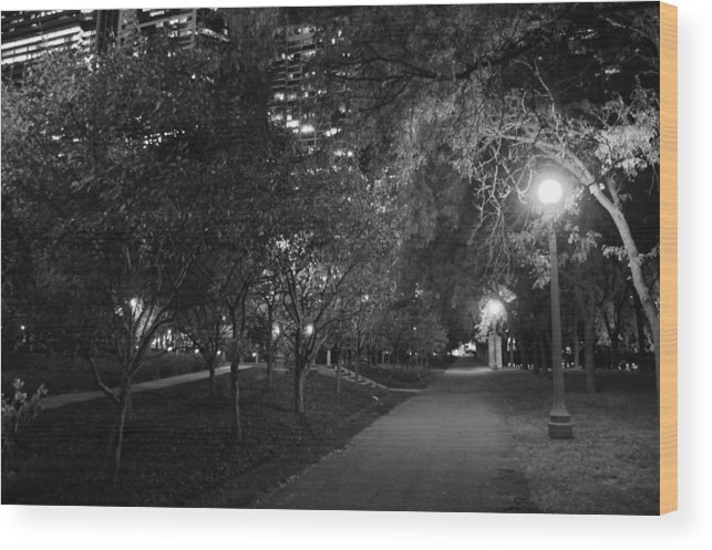 Park Wood Print featuring the photograph The Evening Foliage Tunnel by Gregory Lafferty