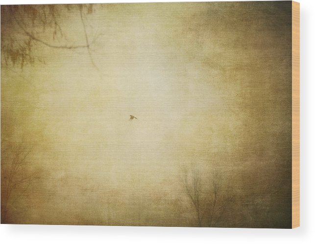 Nature Wood Print featuring the photograph The Flight by Violet Gray