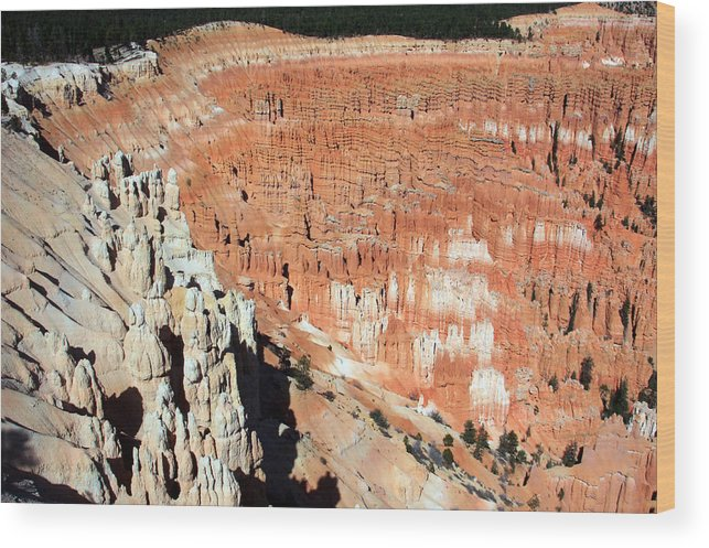 Utah Wood Print featuring the photograph The Grotto At Bryce Canyon by Aidan Moran