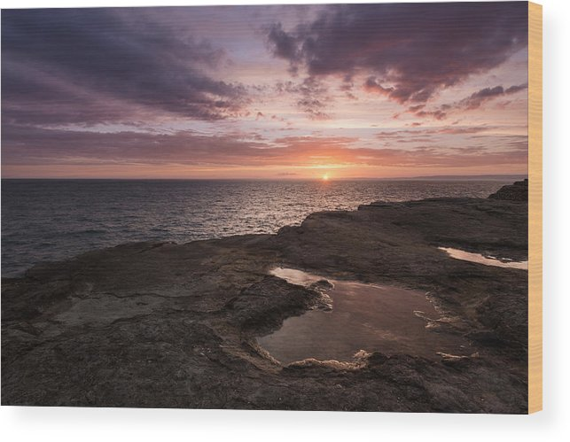 Europe Wood Print featuring the photograph The Jurassic Coast by Ollie Taylor