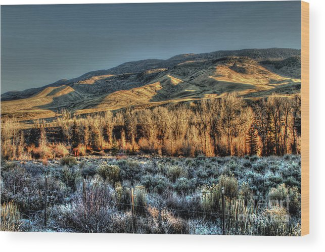 Mountain Wood Print featuring the photograph The Mountainsides by Steven Parker