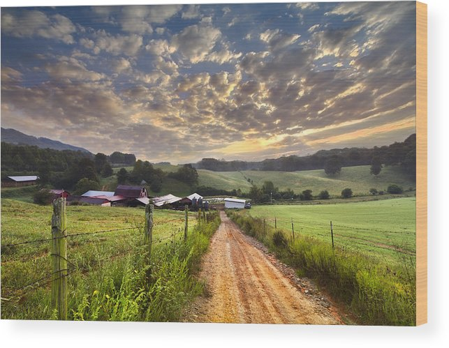 Appalachia Wood Print featuring the photograph The Old Farm Lane by Debra and Dave Vanderlaan