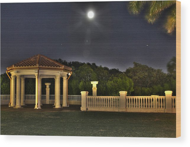 America Wood Print featuring the photograph The Resort At Marina Village by Ash Sharesomephotos