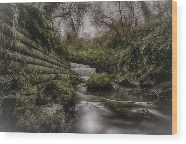 Landscape Wood Print featuring the photograph The Stream by Simon Gray