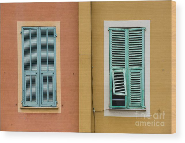 Windows Wood Print featuring the photograph The Two Of Us by Judith Barr