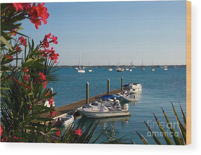 Caribbean Wood Print featuring the photograph The View From St Francis Resort Exuma by Cheryl Hurtak