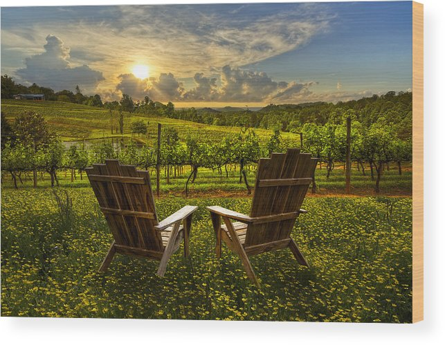 Appalachia Wood Print featuring the photograph The Vineyard  by Debra and Dave Vanderlaan