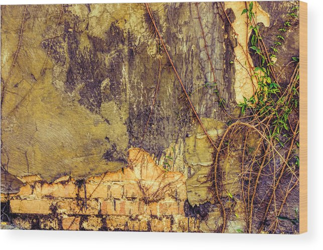 Wall Wood Print featuring the photograph The Wall by Lewis Mann
