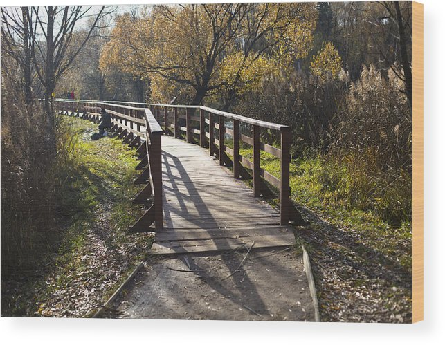 Autumn Wood Print featuring the photograph The Way by Vitaly Kozlovtsev