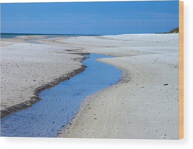 Coastline Wood Print featuring the photograph Tidal Pools by Susan Leggett