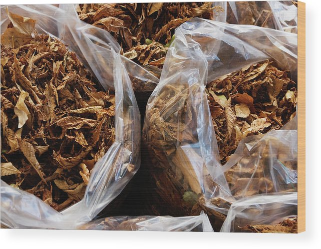 Autumn Wood Print featuring the photograph Top View Of Three Clear Bags Of Dried by Ron Koeberer