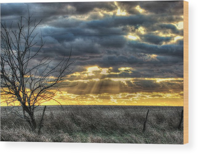 Landscape Wood Print featuring the photograph Tranquil by Thomas Danilovich