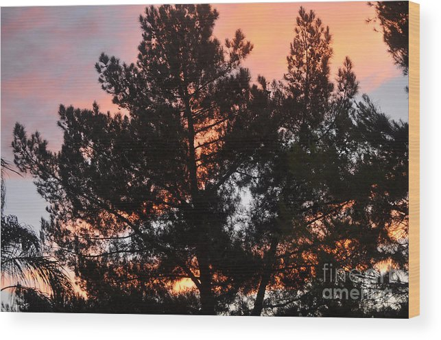 Tree Wood Print featuring the photograph Tree On Fire by Jay Milo