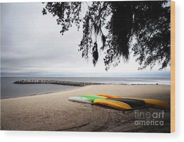 Landscape Wood Print featuring the photograph Tropical Watercraft by Earl Johnson