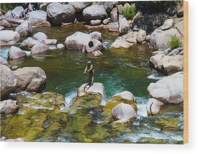 Yosemite Wood Print featuring the photograph Trout Fly Fishing by Brian Williamson
