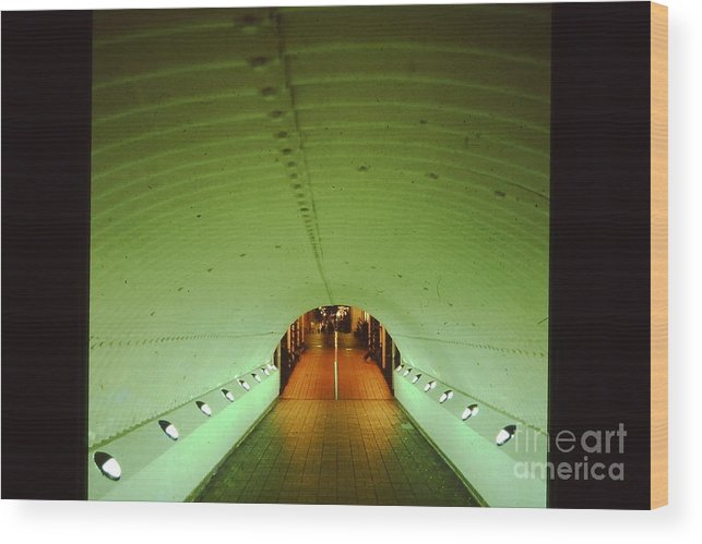 Night Wood Print featuring the photograph Tunnel by Peter Dombrowski