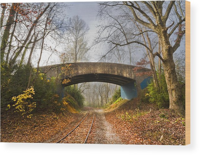 Appalachia Wood Print featuring the photograph Under And Over by Debra and Dave Vanderlaan