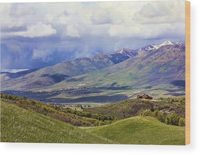 Utah Wood Print featuring the photograph Utah by Lisa Alex
