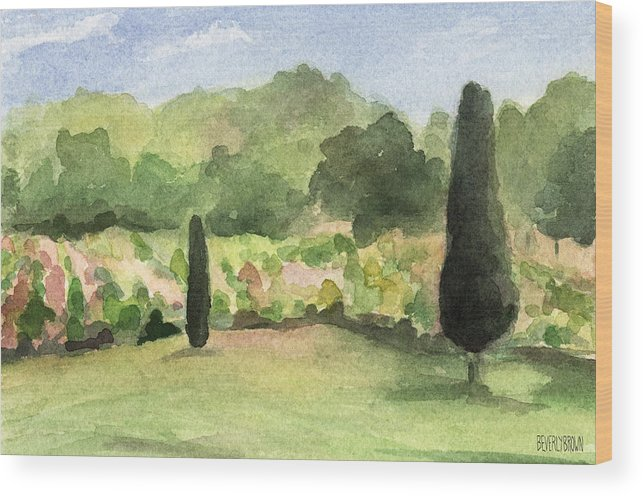 French Wood Print featuring the painting Vineyard In Provence Watercolor Paintings Of France by Beverly Brown