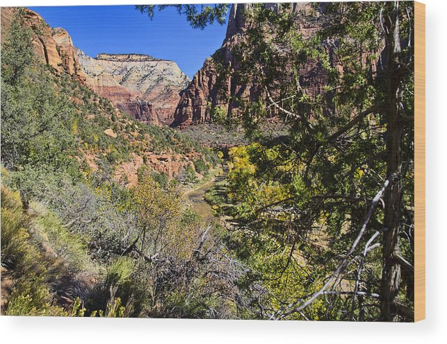Virgin River Wood Print featuring the photograph Virgin River View - Zion by Jon Berghoff