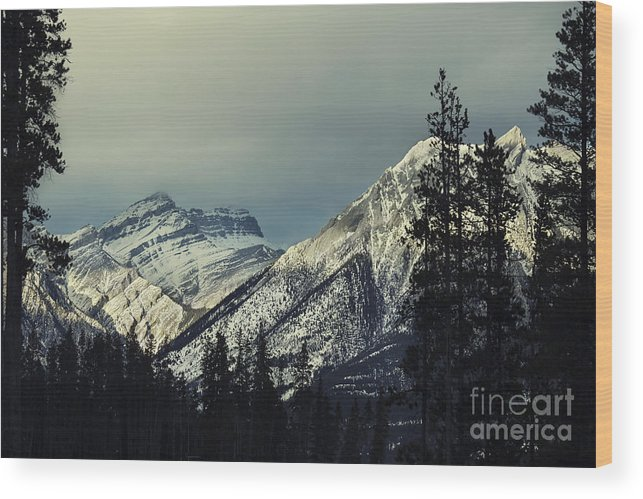 Canmore Wood Print featuring the photograph Visions Prelude by Evelina Kremsdorf