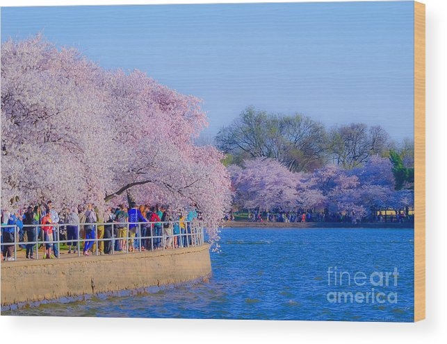 2012 Centennial Celebration Wood Print featuring the photograph Visitors To The Blooms On The Basin by Jeff at JSJ Photography