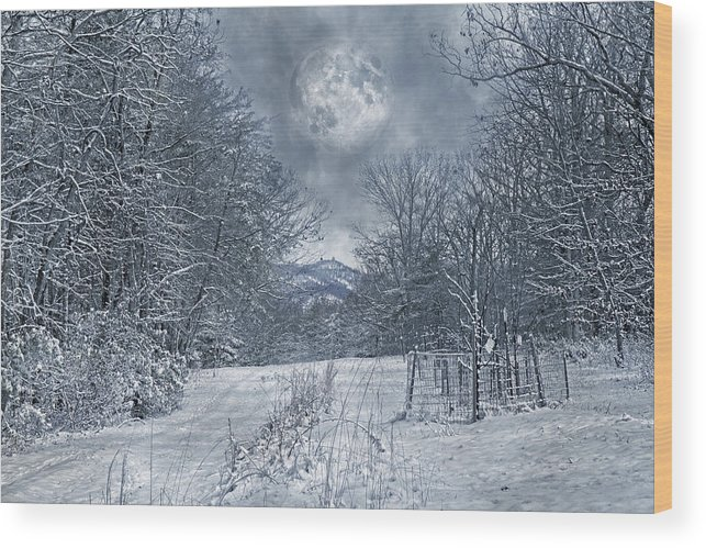 Haunted Wood Print featuring the photograph Visual Quiet by Betsy Knapp