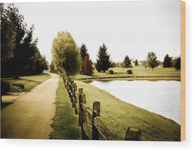 Nature Wood Print featuring the photograph Walkway by Melissa Leda